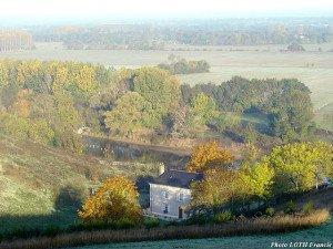 La Haie longue - Saint-Aubin-de-Luigné (49)