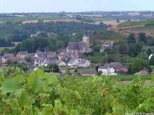 Vue sur Chaudefonds-sur-Layon (49)
