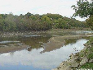 Bras de Loire à Savennières (49)
